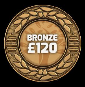 RTP Bronze